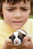 Young boy holding newborn puppy dog with great care