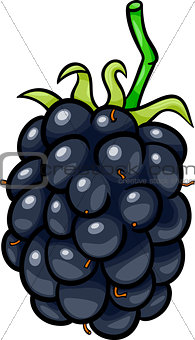 blackberry fruit cartoon illustration