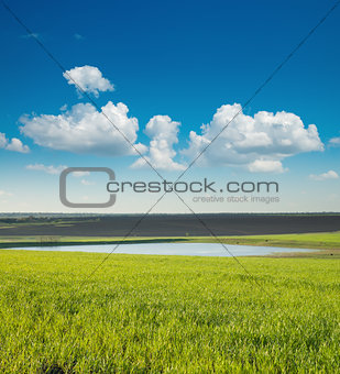 green field and pond