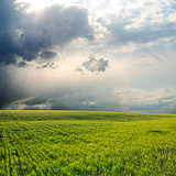 dramatic sky over field