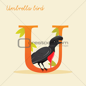 Animal alphabet with umbrella bird
