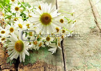 bouquet of fresh daisies on a wooden background