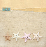 Starfishes on canvas texture