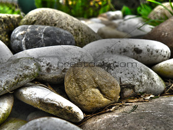 Little stones in garden