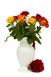 multicolored roses in vase