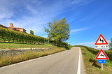 Road among vineyards. Piedmont, Italy.