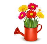 Fresh summer flowers in orange watering can. Vector illustration