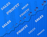 Sales and Profit