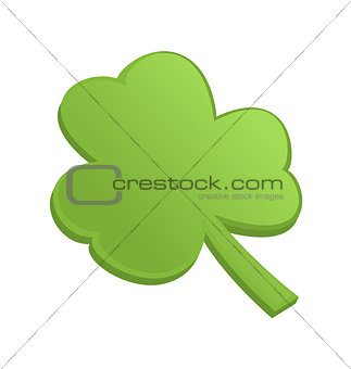 Green shamrock clover on st Patrick Day