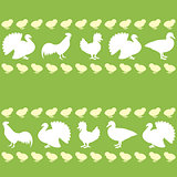 Seamless pattern with farm birds silhouettes