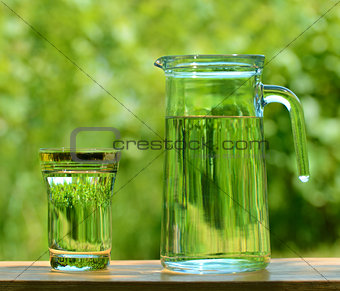 A Glass and Carafe Full of Water on the Background of Foliage