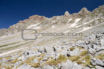 Alpine Rocky Slope