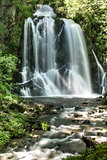 waterfall Pevereggia in the forest