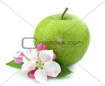 apple with flower