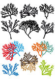 corals reefs, vector set