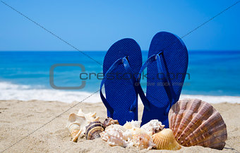 Flip-flops with seashells on sandy beach