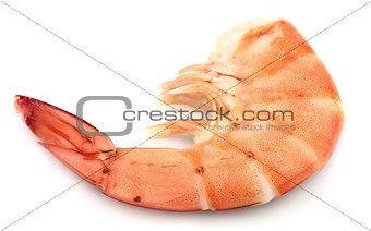 One huge shrimp