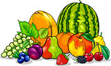 fruits group cartoon illustration