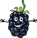 funny blackberry fruit cartoon illustration