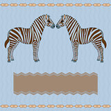 Zebra card with stripes