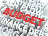 Budget. The Wordcloud Concept.