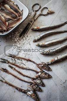Raw anchovies on paper