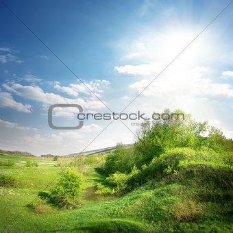 Green ravine