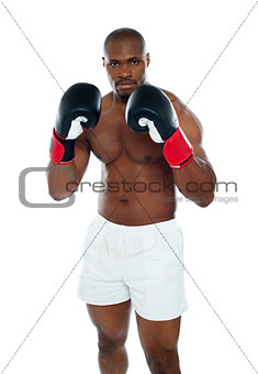 African boxer in an aggressive pose
