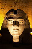 ramses II statue Luxor temple