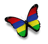 Mauritius flag butterfly, isolated on white