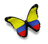 Colombian flag butterfly, isolated on white