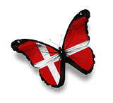 Danish flag butterfly, isolated on white