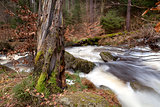 fast river in Harz mountains