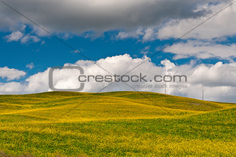 Power Line of Tuscany