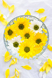 White and yellow flowers floating in bowl, spa background