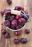 Fresh wet cherries  in a bucket
