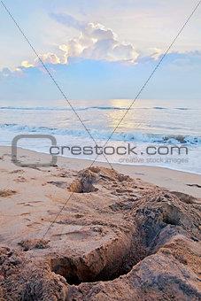 Crab catchers Sunrise on Pondicherry Beach