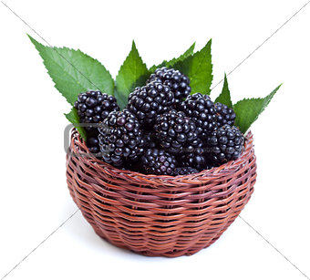 Fresh blackberries in small basket