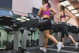 Two women exercising on treadmills