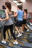Three people training on step machines
