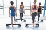 Female aerobics group stepping