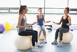 Women doing work out on exercise balls