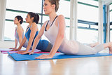 Women doing cobra pose in yoga class