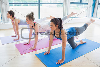 Women on mats at yoga class