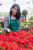 Garden center worker looking at flowers using tablet