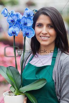 Brunette woman holding a blue flower working in garden center