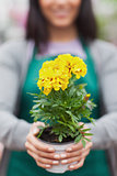 Woman presenting a yellow flower