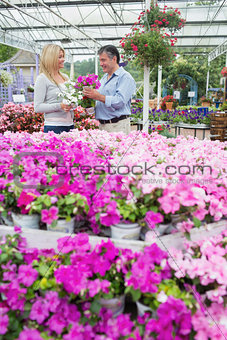Couple choosing pink flowers