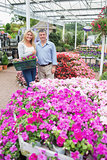 Couple standing in the garden centre and holding a basket
