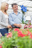 Couple looking at the blue flower